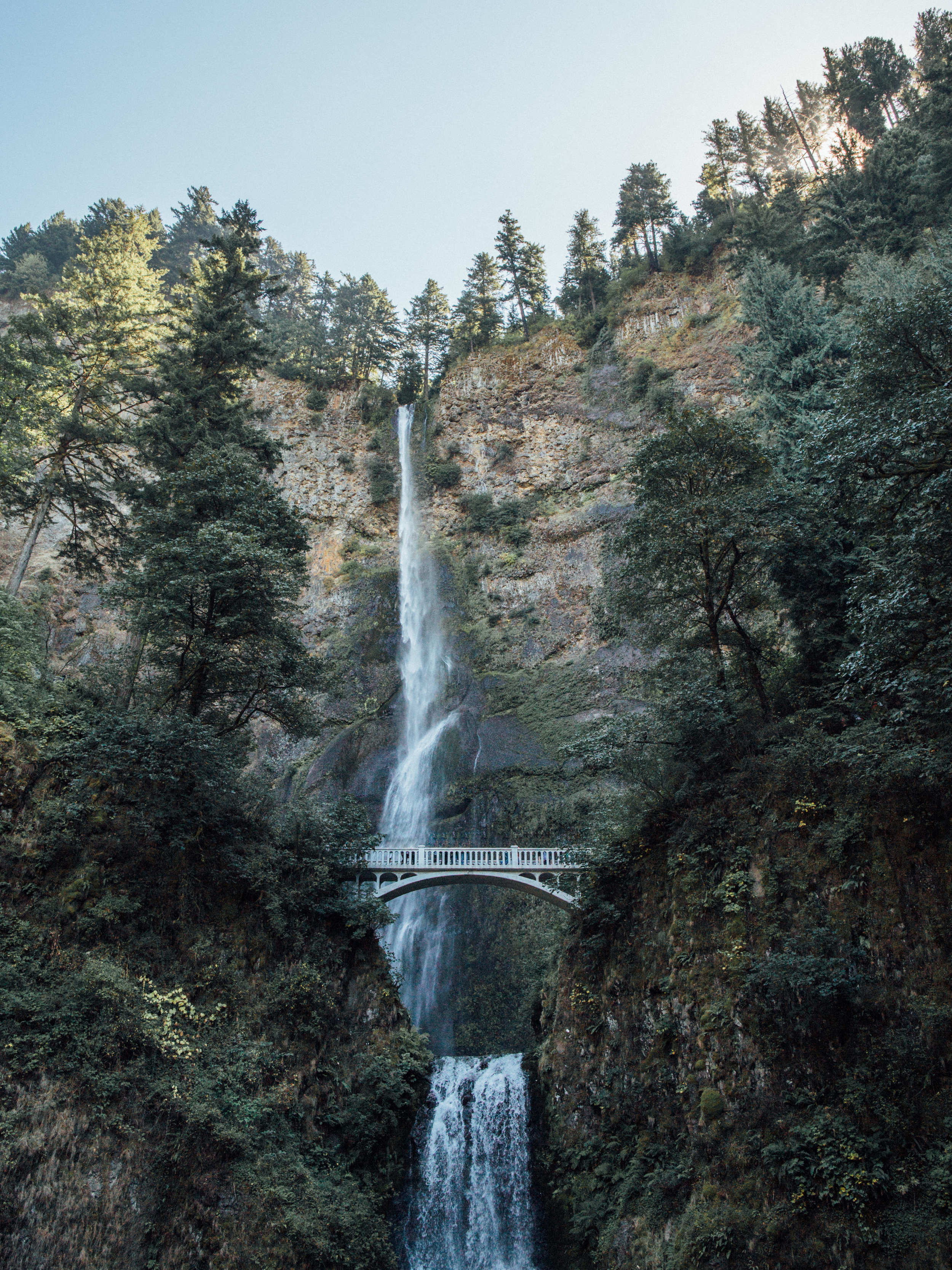 Portland, Oregon Engagement & Wedding Photographer