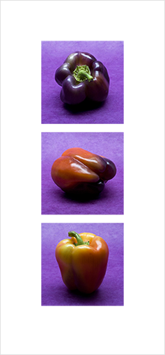 Local Color 9 (Peppers)