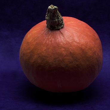 pumpkin_©acfallen.png