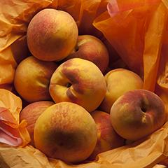 Orange 4 (Peach basket)