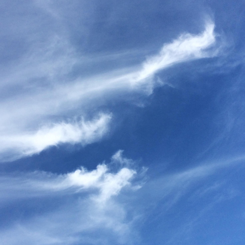 Cloudy_©acfallen.png