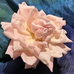 Small 7 (Last Rose)