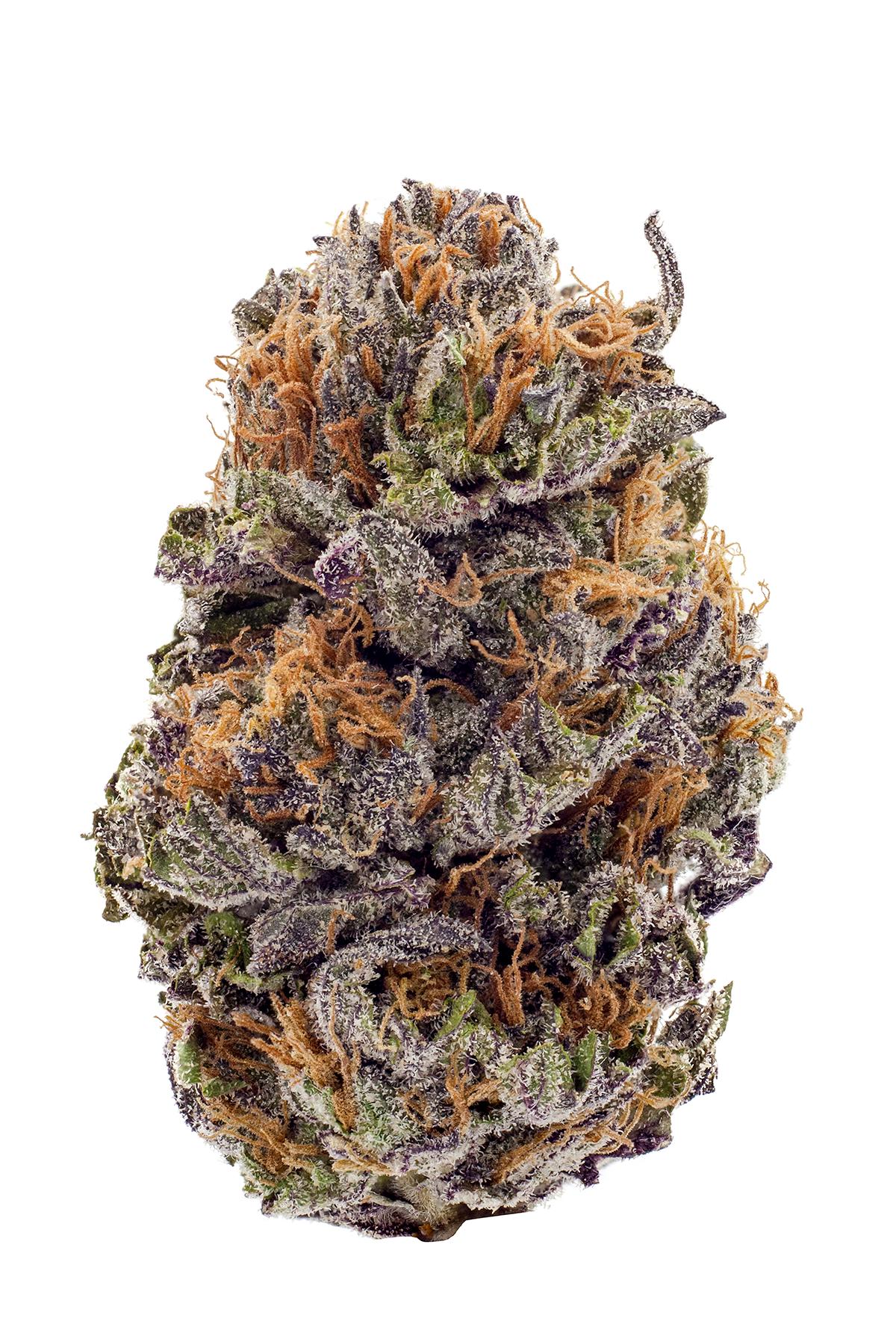 Purple-Kush.png