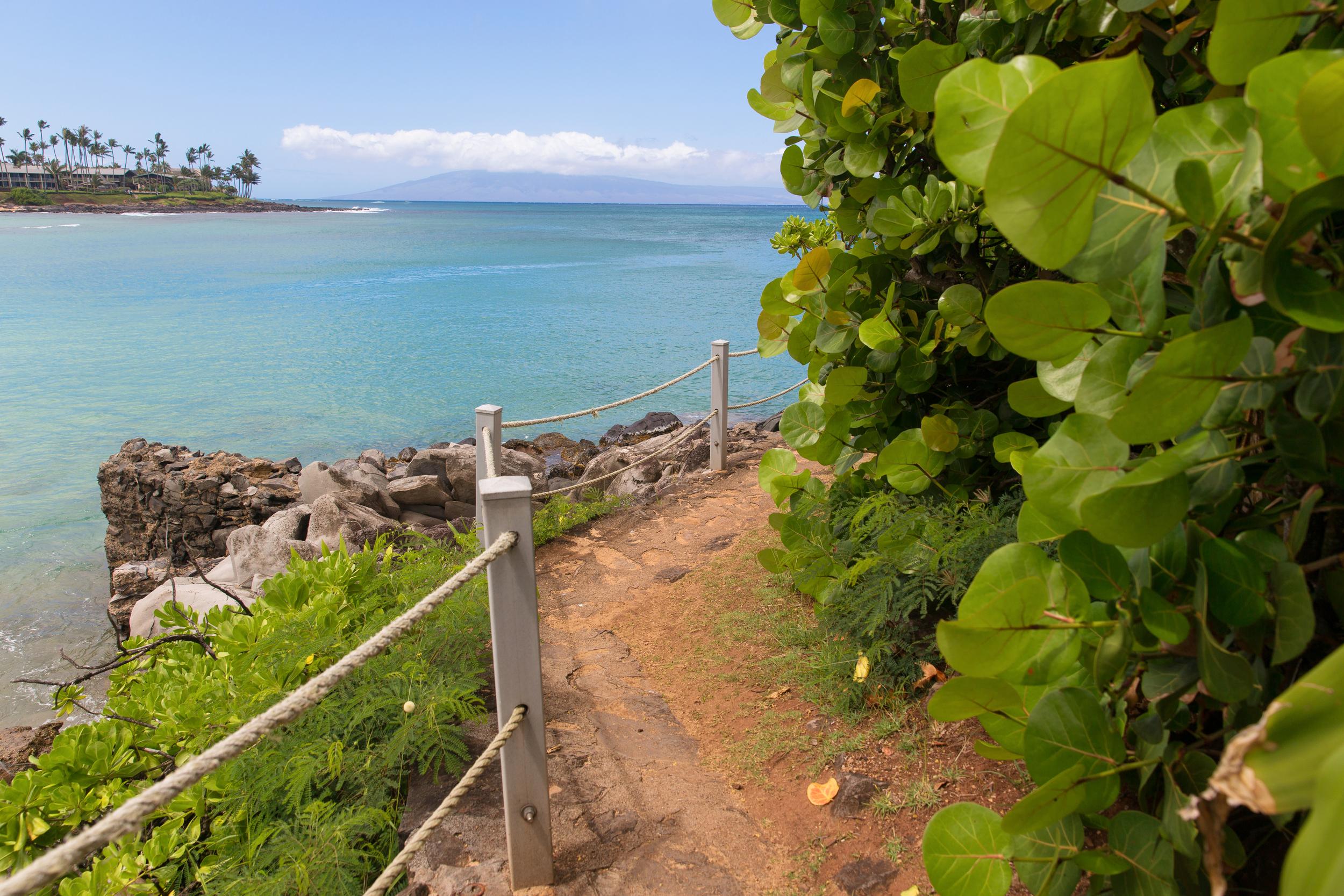 Maui, 2015