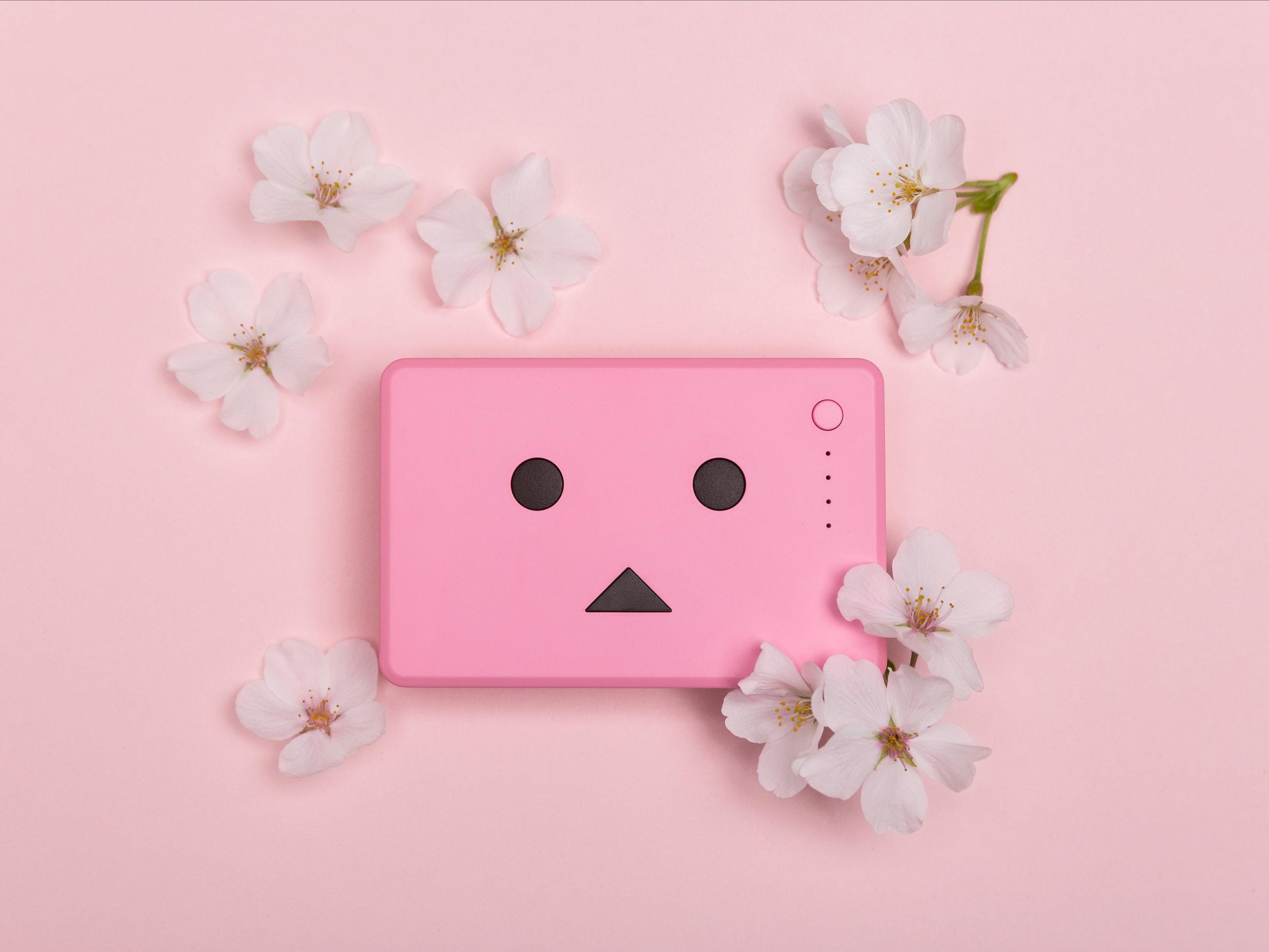Sakura 2.jpg