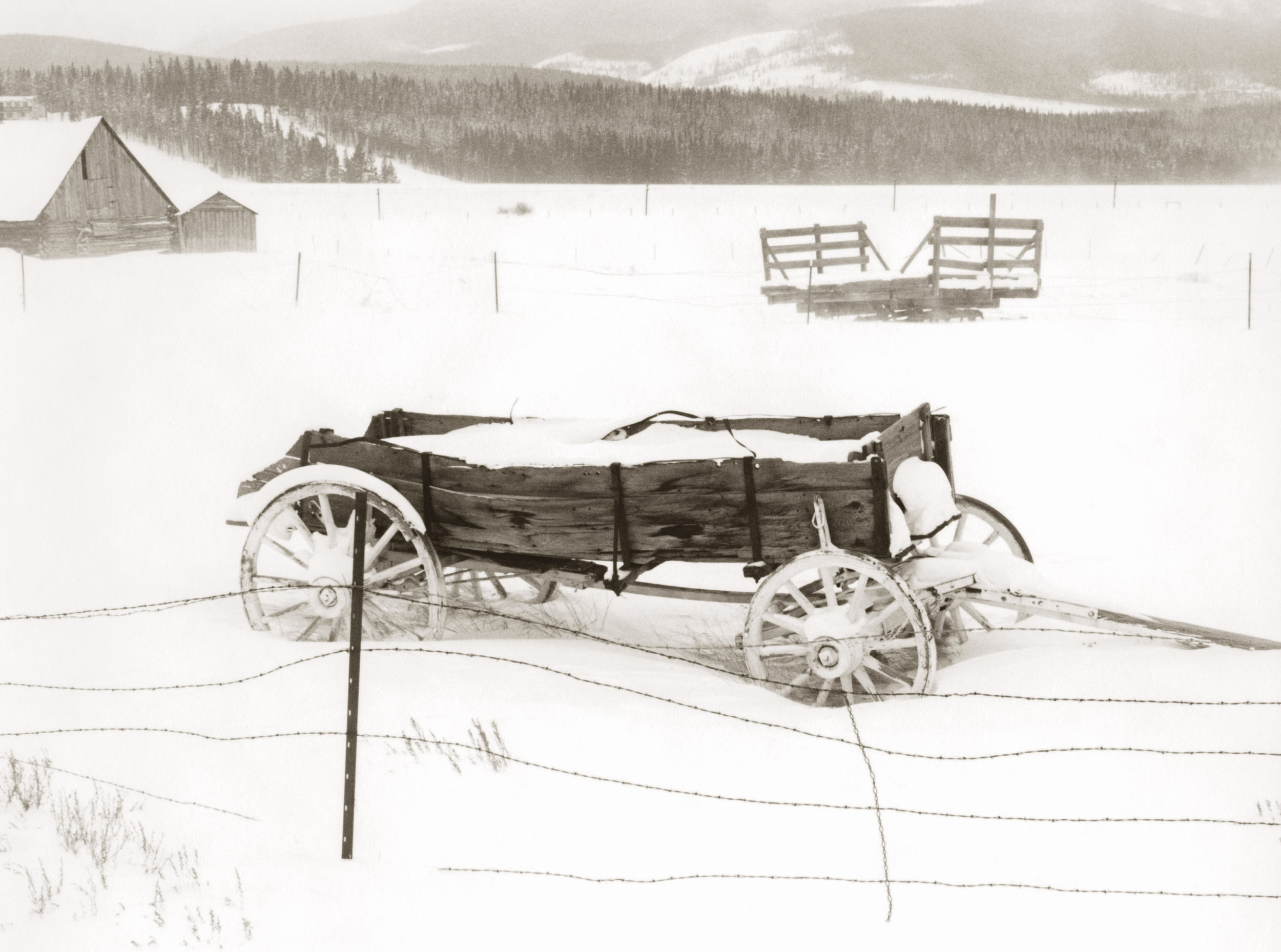 Carlson's Wagon.jpg