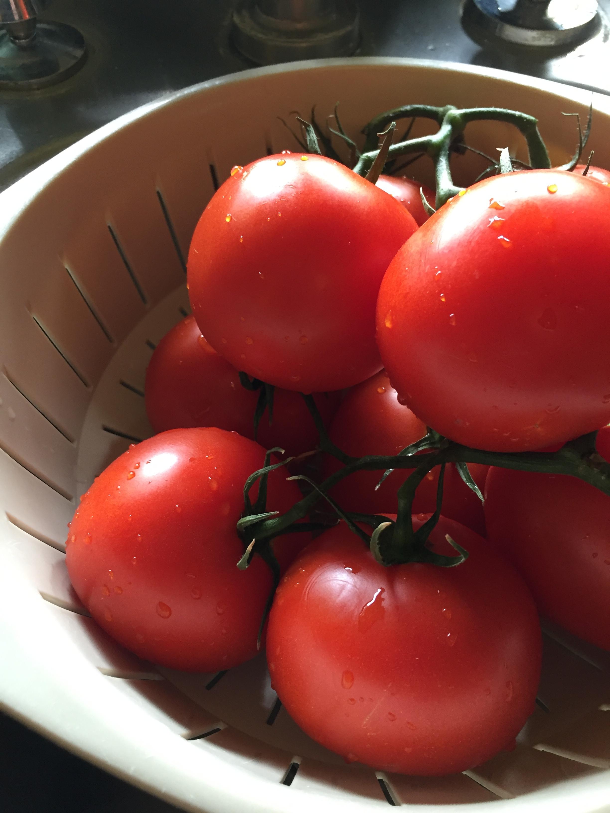 Ahhh, summer garden tomatoes!!