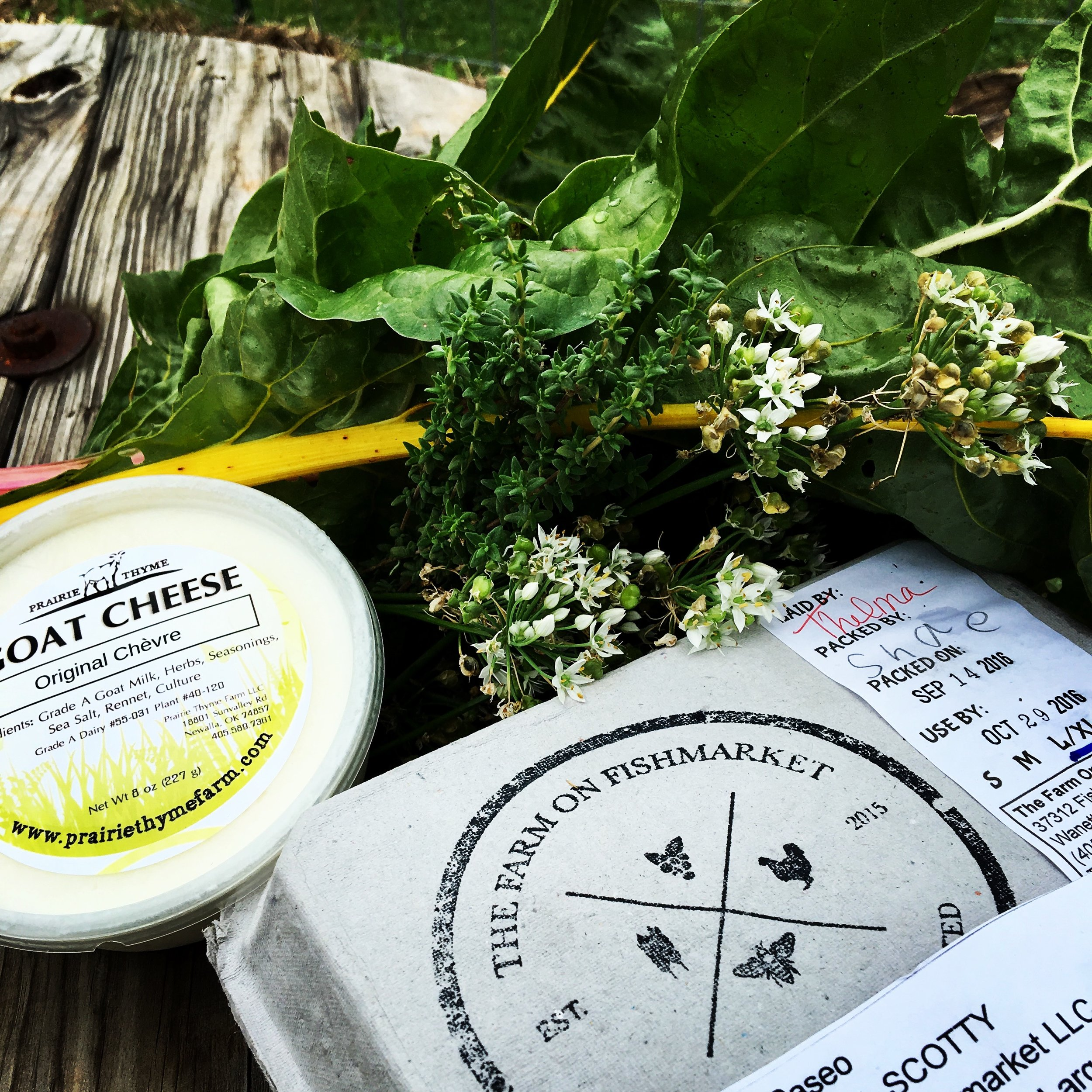 Just picked up my order from the Cooperative, snagged some chard and herbs, and ready to bake!