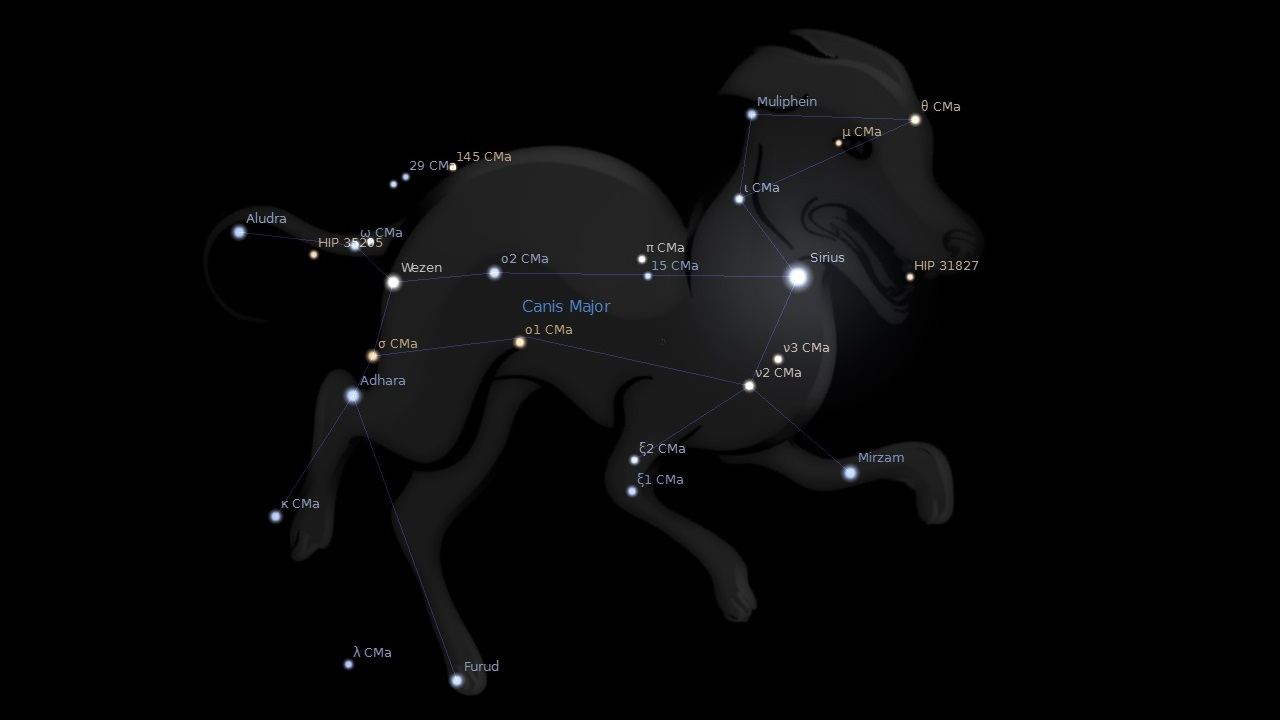 Canis Major  and the Dog Star  Sirius