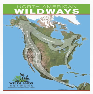 North_America_Wildways.png