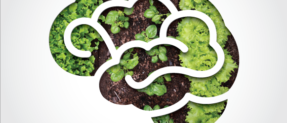 Plant. Sow. Reap-eat. -
