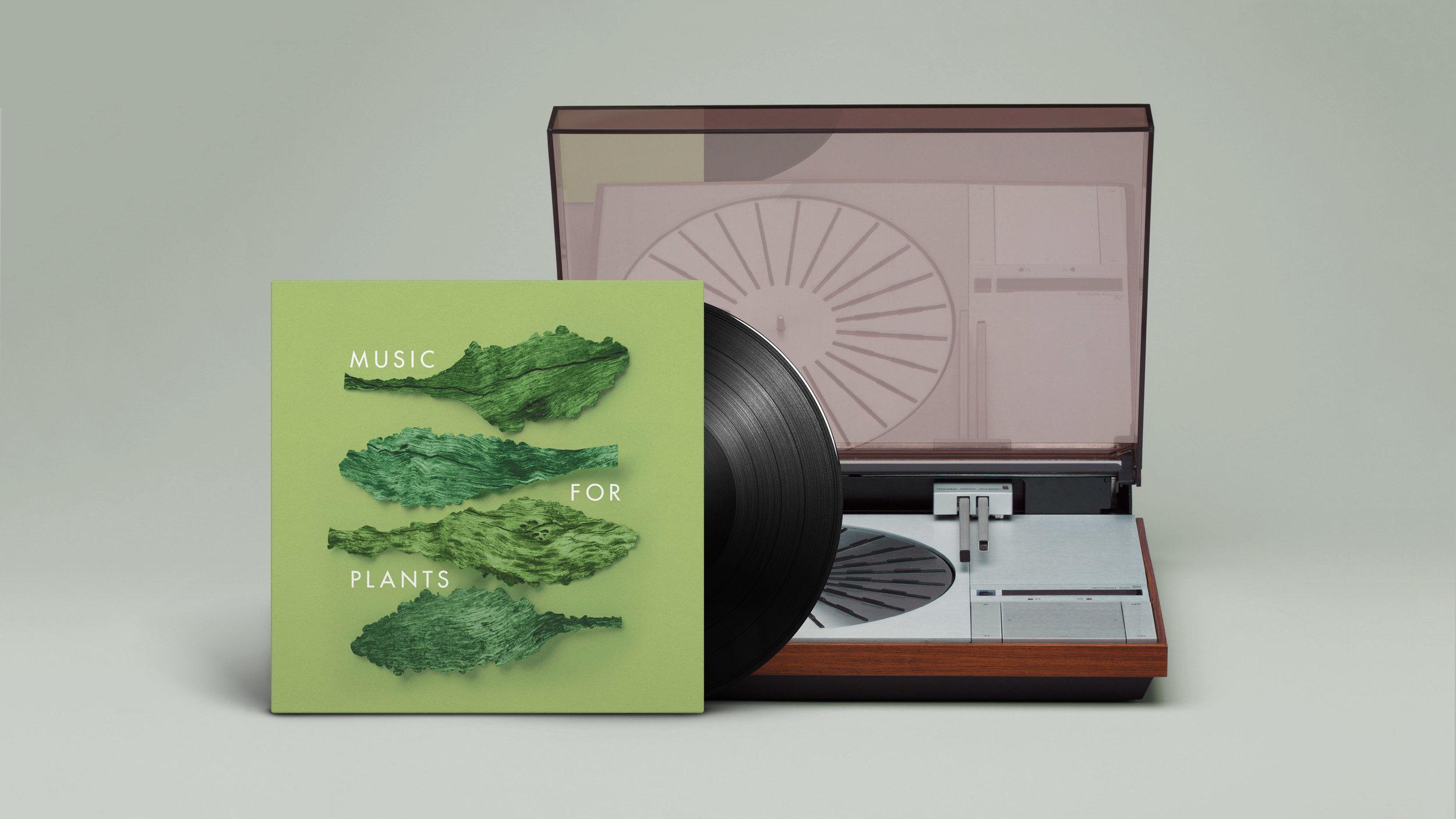 Vinyl 3.jpg