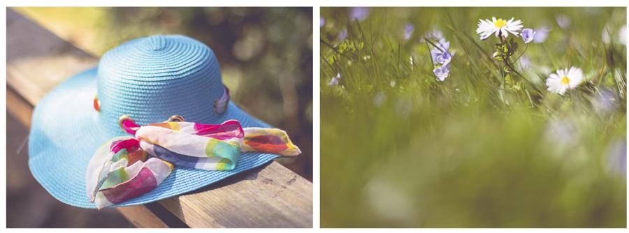 summerday.jpg