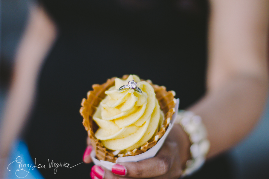 Harpreet & Gurinder, Engagement Session, low-res - Emmy Lou Virginia Photography-75.jpg