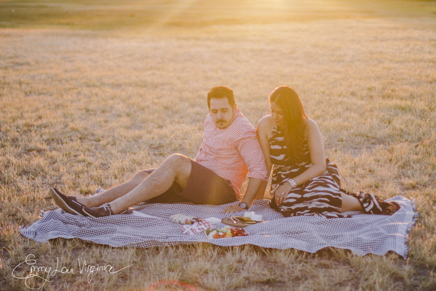 Harpreet & Gurinder, Engagement Session, low-res - Emmy Lou Virginia Photography-135.jpg