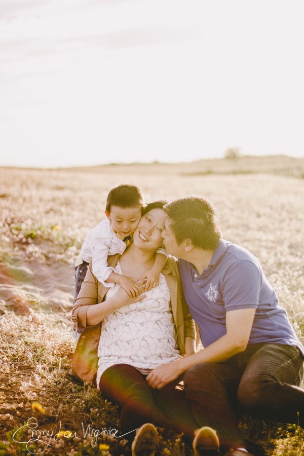 Lauren Liu, Maternity Session, July 2013 - low-res - Emmy Lou Virginia Photography-65.jpg