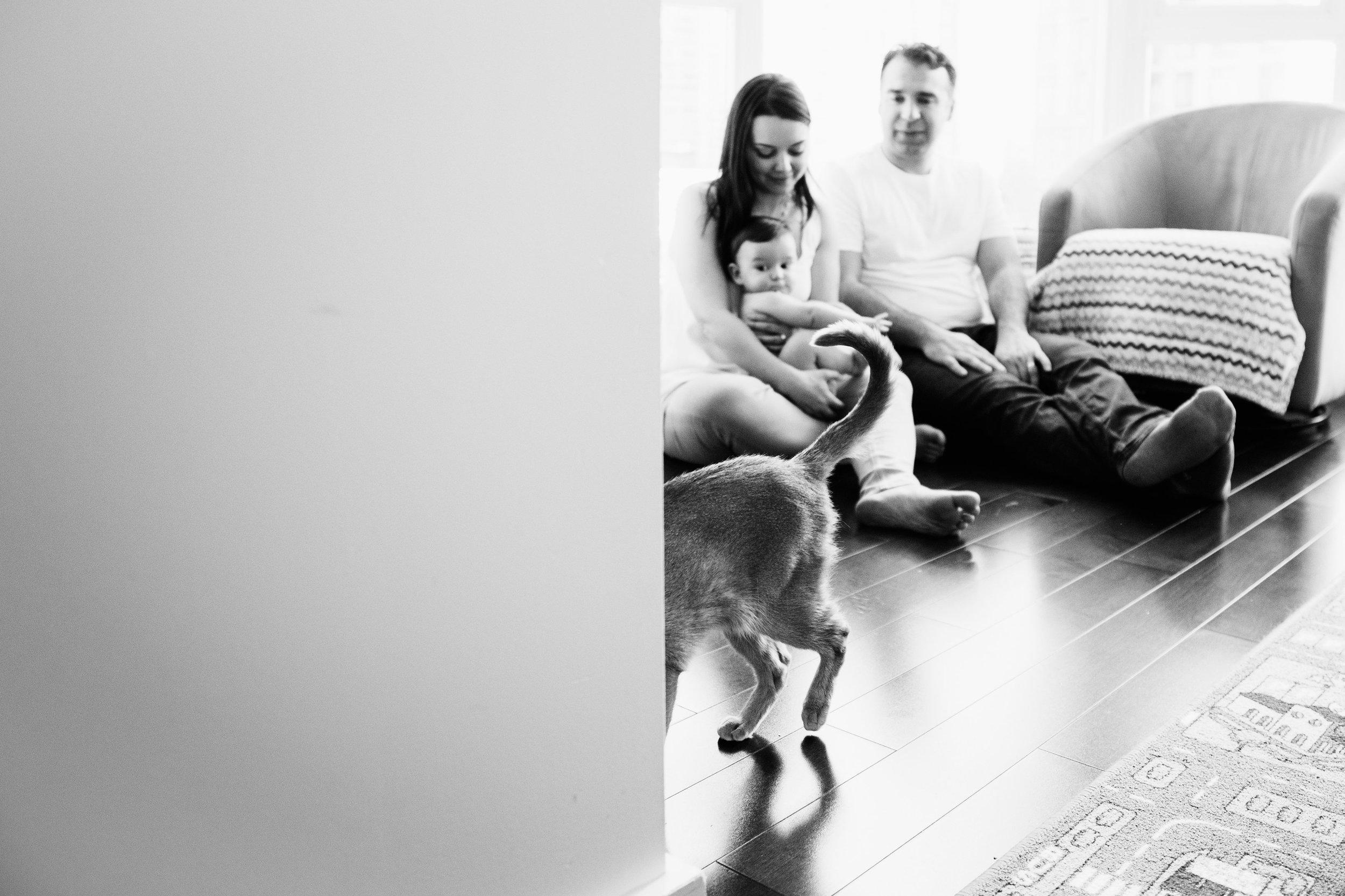 KateM,FamilySession-EmmyLouVirginiaPhotography-190.jpg