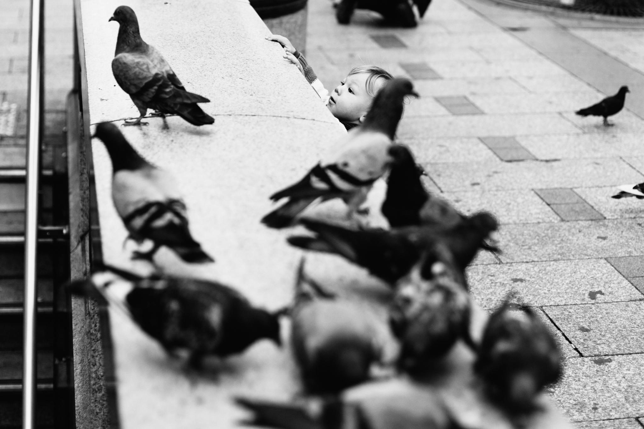 Paris - Emmy Lou Virginia Photography-8.jpg