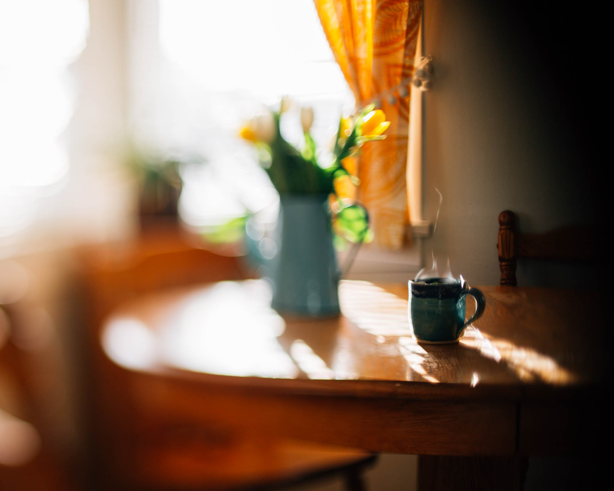 flowers and steaming cup in sunshine freelensed