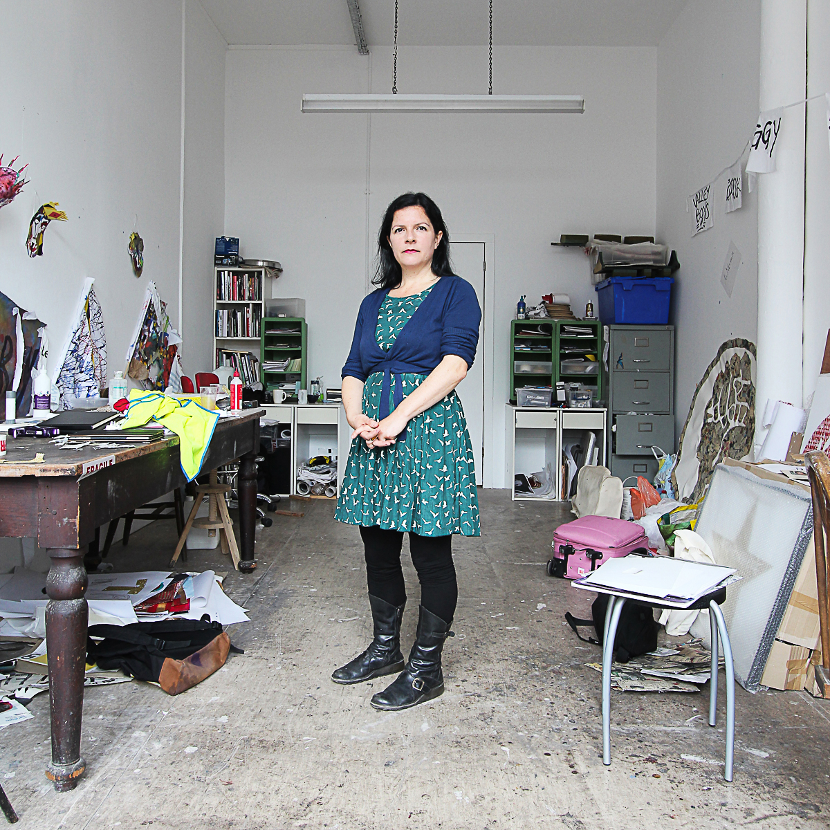 Janie Nicoll, visual artist