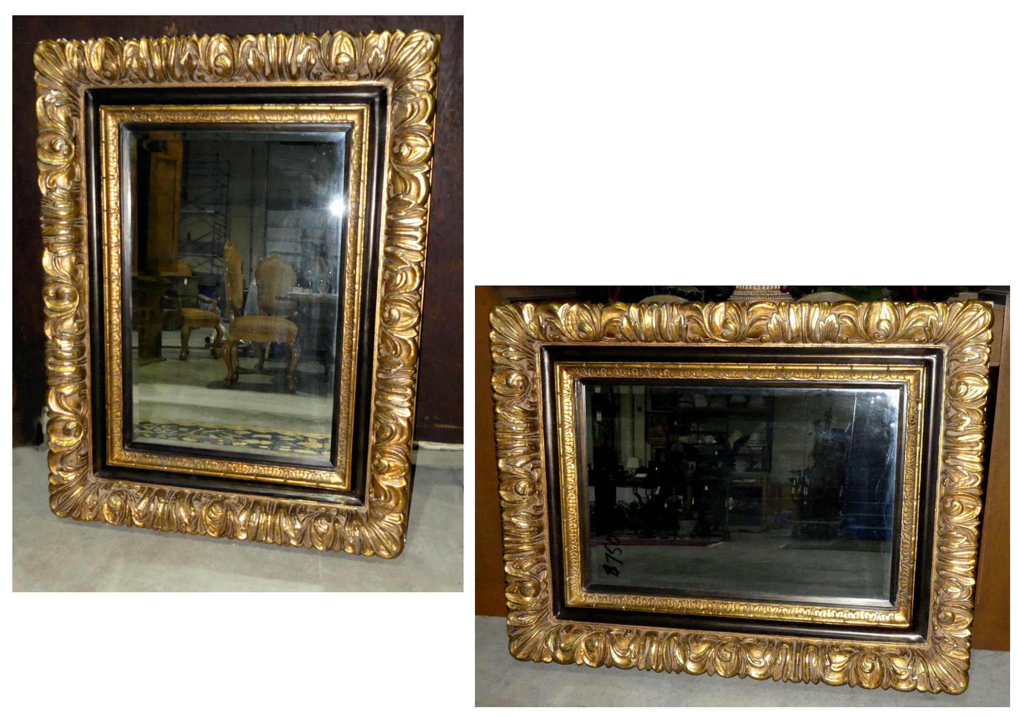 "Pair of 2 Carved Gilt Mirrors 41.5"" x 53.5"""