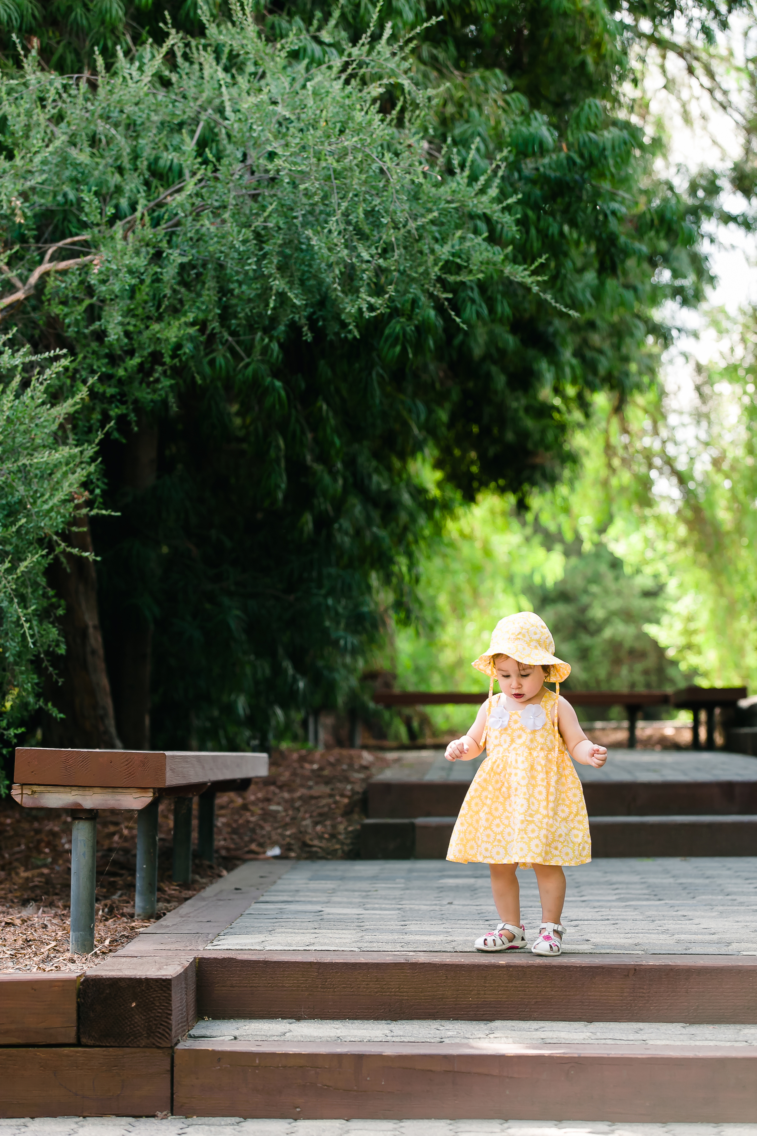 Los Angeles Family Photos, Arcadia Portrait Photography, Arboretum images, Little Yellow Dress, First Birthday, San Gabriel Lifestyle Photographer, Gina Holt Photography, Love, Celebrate, Amazing Family and Baby Pictures