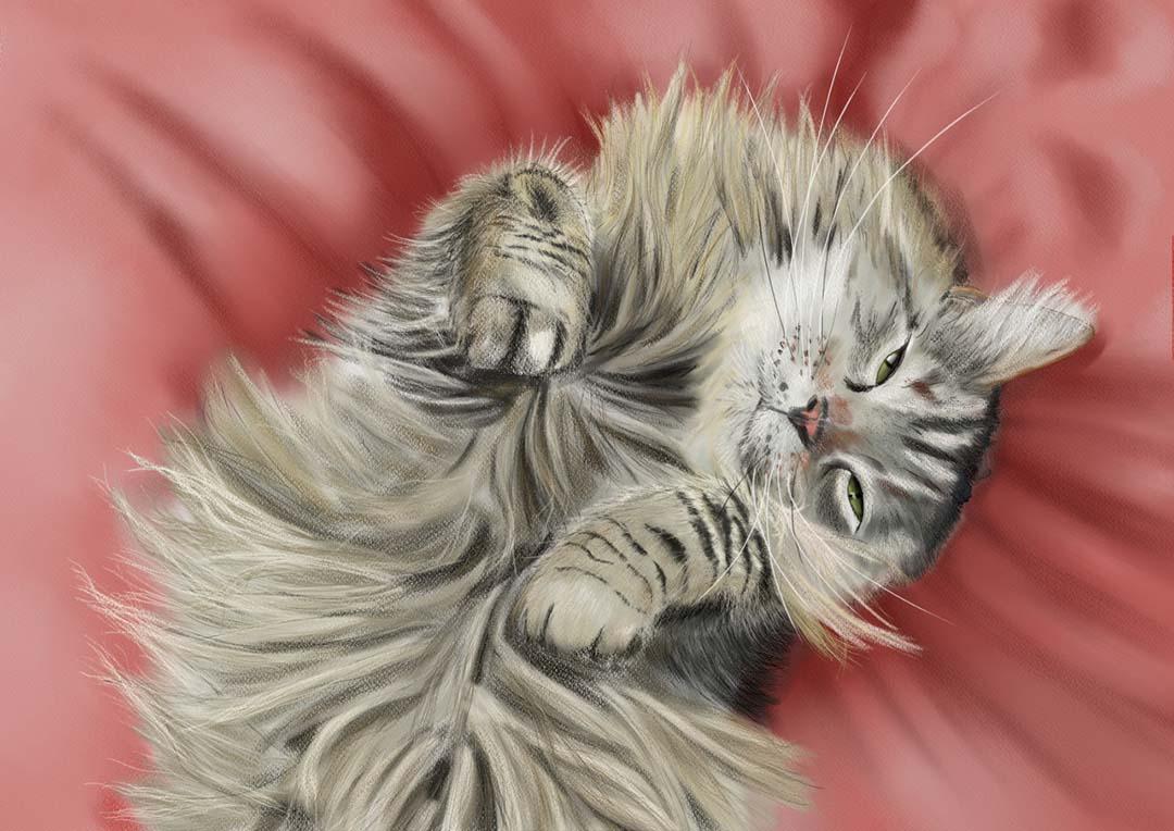 Cat by Jorg Vollmer.jpg