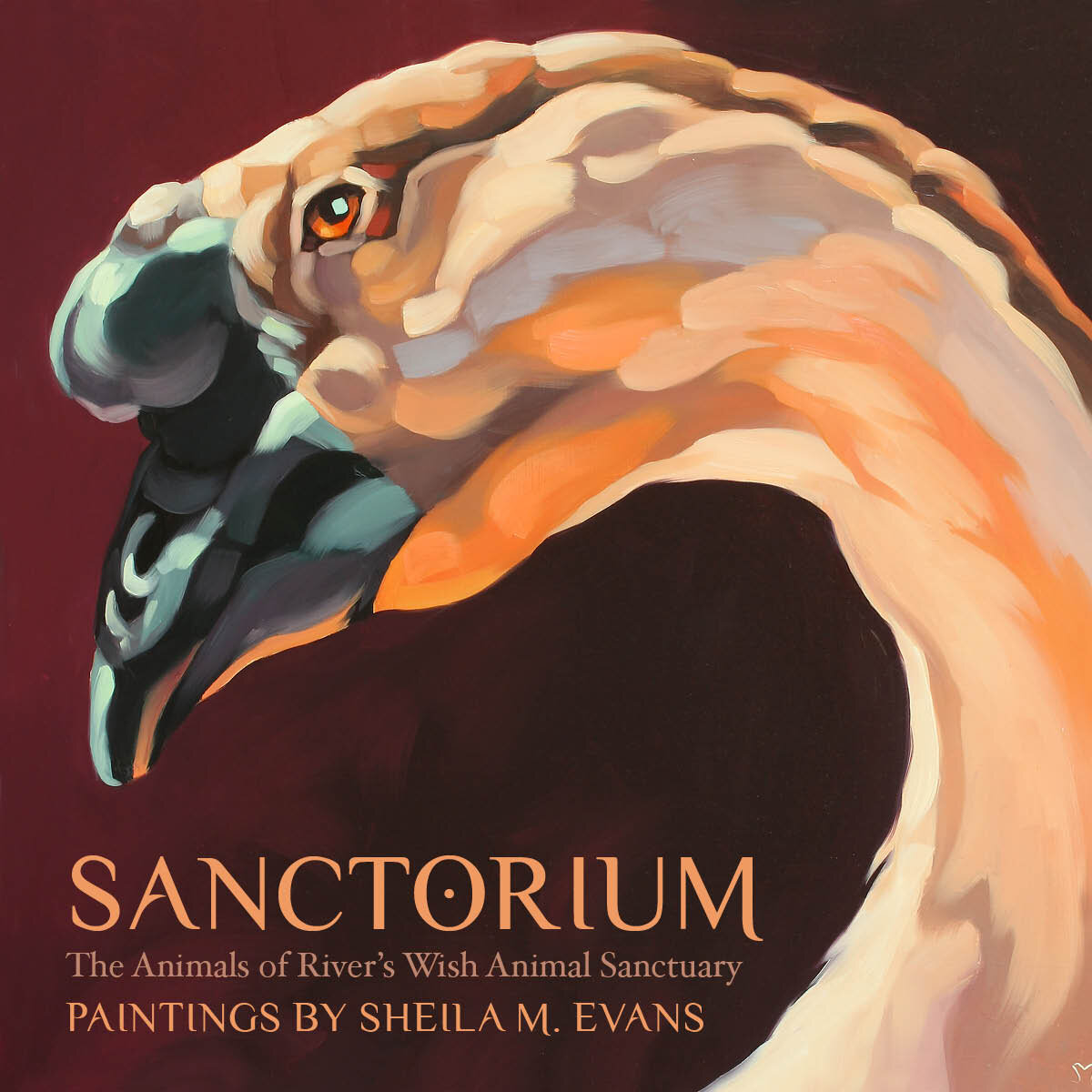 New! Sanctorium Show Books - Books will be available at the gallery the last three days of the show: Friday September 20, 5–8 p.m.; Saturday September 21, 1–4 p.m.; and at the closing reception, Friday September 27th, 5–8 p.m.Book includes all forty images from the show along with the animals' stories.Price is $30 (including tax). Five dollars from each book sale will be donated to River's Wish.Books can also be purchased online here.