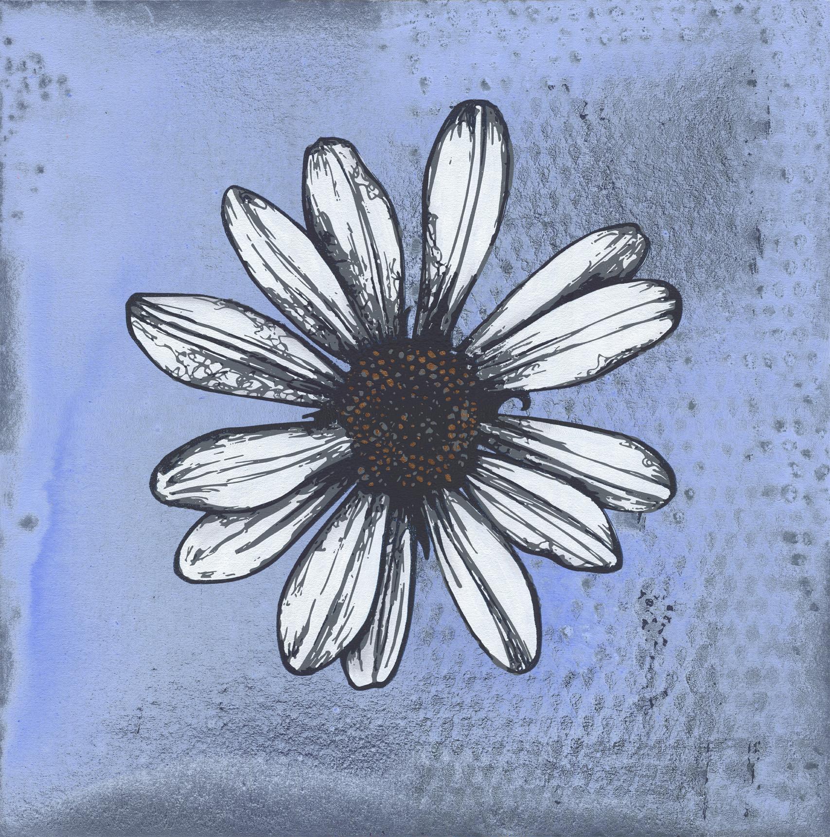 daisy lt blue Web LG.jpg