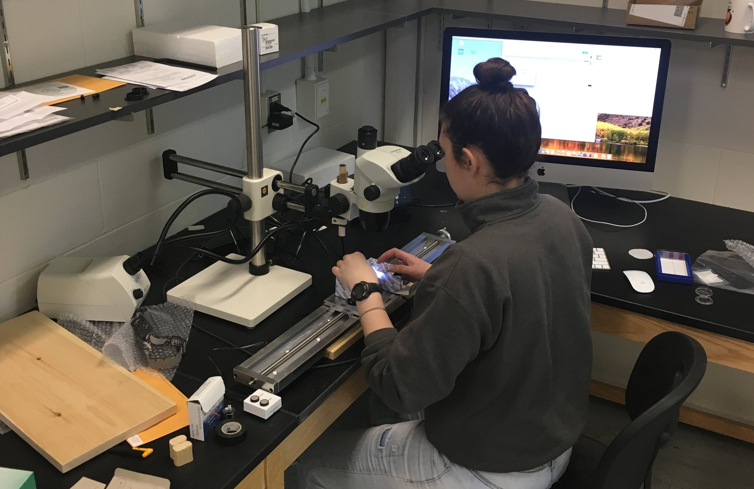 Sara Bohnert - Former co-op student (Winter 2018)During her semester in the lab, Sara did everything from microtoming shrub samples to research passenger pigeon. Hopefully one day she will be up here again as a MES/PhD student..