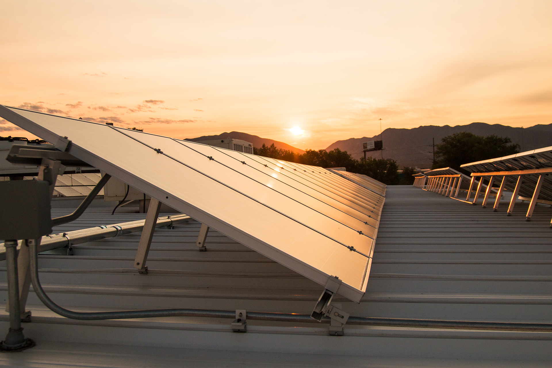 Solar Panels Sunrise.jpg