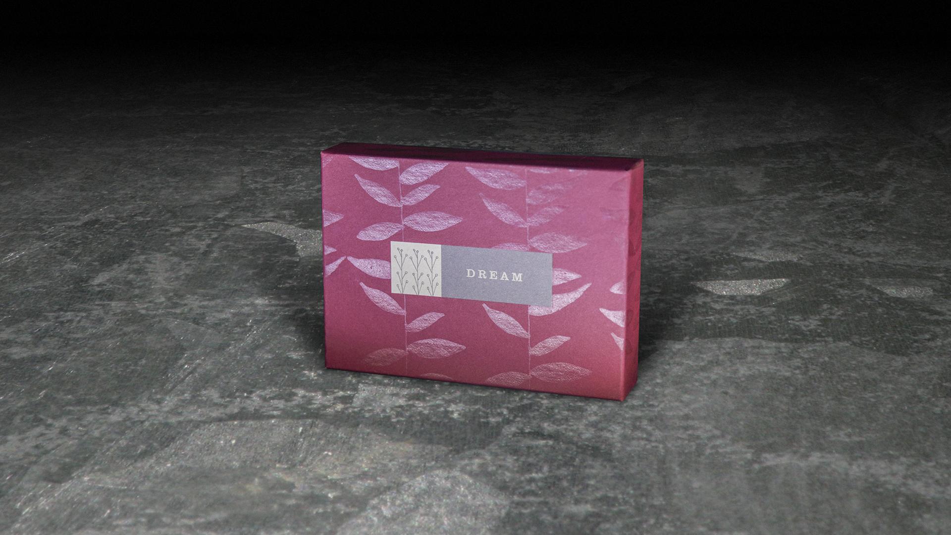 Rigid Dream Box.jpg