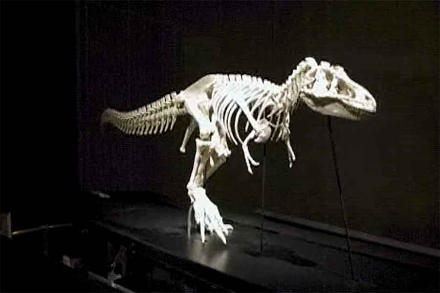walking t-rex