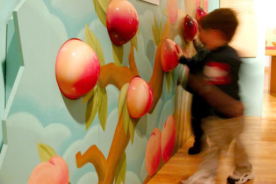 kids using the peach tree