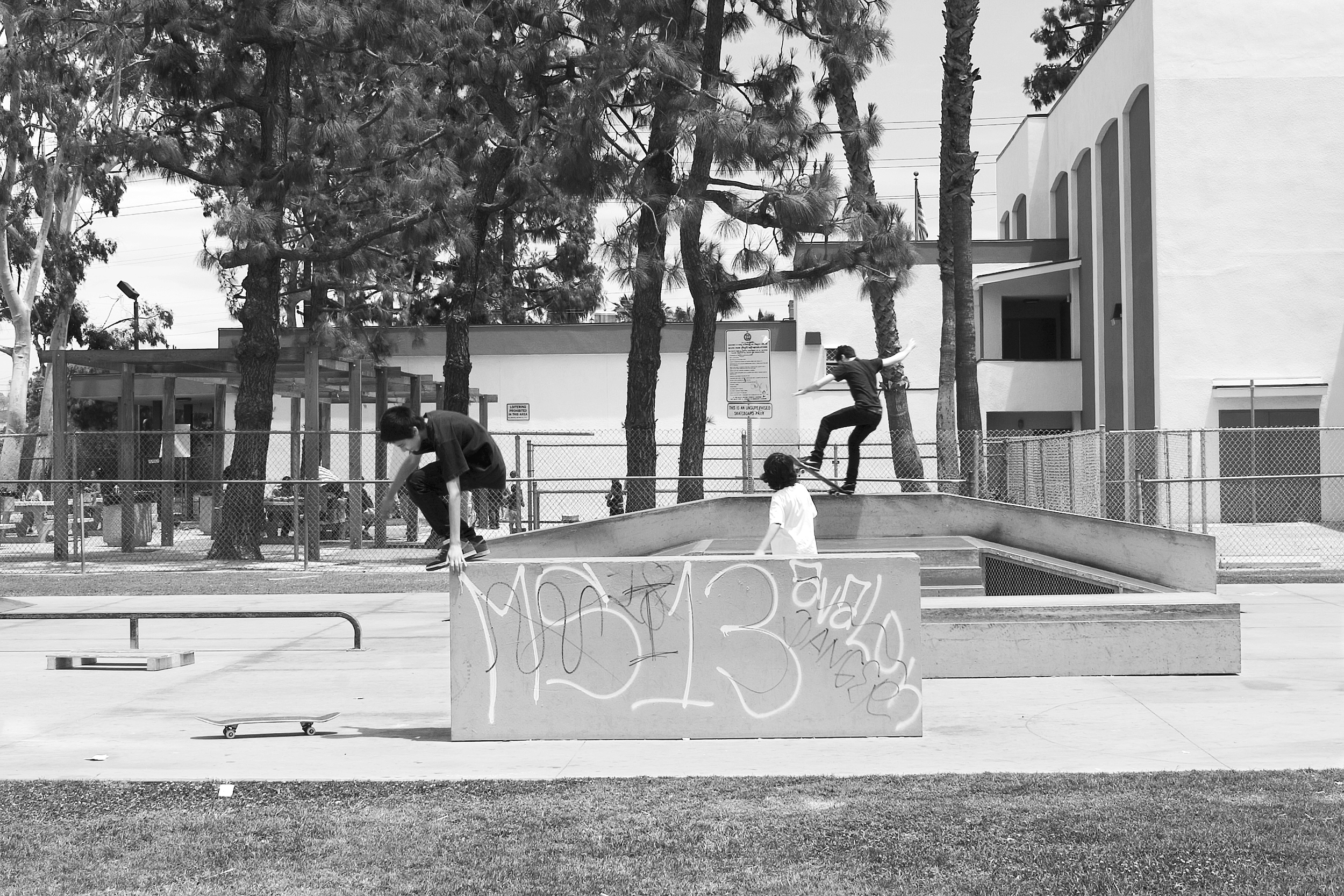 """Three young teens enjoy skateboarding at Rogers Park in Inglewood. Graffiti tags declare the presence of the MS-13 (or Mara Salvatrucha) and Avalon Crips gangs. 2009.                                0     false             18 pt     18 pt     0     0         false     false     false                                                     /* Style Definitions */ table.MsoNormalTable {mso-style-name:""""Table Normal""""; mso-tstyle-rowband-size:0; mso-tstyle-colband-size:0; mso-style-noshow:yes; mso-style-parent:""""""""; mso-padding-alt:0in 5.4pt 0in 5.4pt; mso-para-margin:0in; mso-para-margin-bottom:.0001pt; mso-pagination:widow-orphan; font-size:10.0pt; font-family:""""Times New Roman"""";}"""