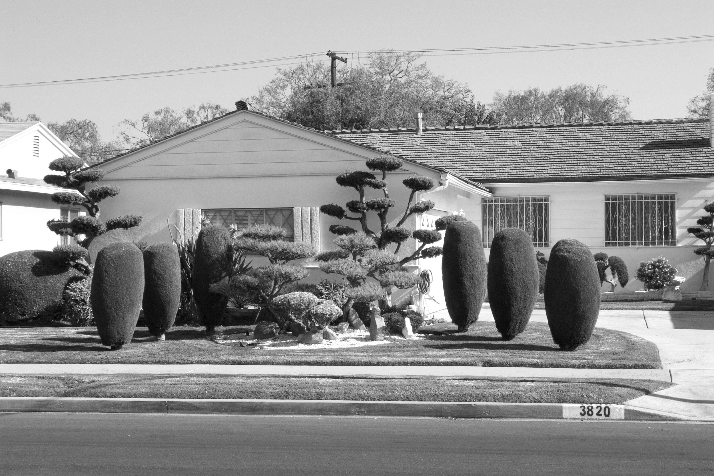 """Japanese-style landscaping in Crenshaw serves as a visible remnant of the area's past as a predominantly African American and Japanese American neighborhood.2006.                                0     false             18 pt     18 pt     0     0         false     false     false                                                     /* Style Definitions */ table.MsoNormalTable {mso-style-name:""""Table Normal""""; mso-tstyle-rowband-size:0; mso-tstyle-colband-size:0; mso-style-noshow:yes; mso-style-parent:""""""""; mso-padding-alt:0in 5.4pt 0in 5.4pt; mso-para-margin:0in; mso-para-margin-bottom:.0001pt; mso-pagination:widow-orphan; font-size:10.0pt; font-family:""""Times New Roman"""";}"""