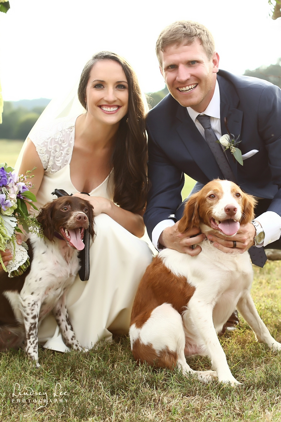 The bride and groom with their beloved Brittany spaniels! ©Lindsey Lee Photography