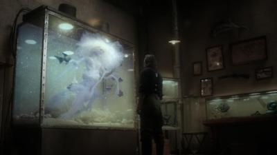 Aquarium_040.jpg