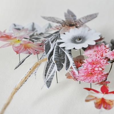 bloem-002-b.jpg