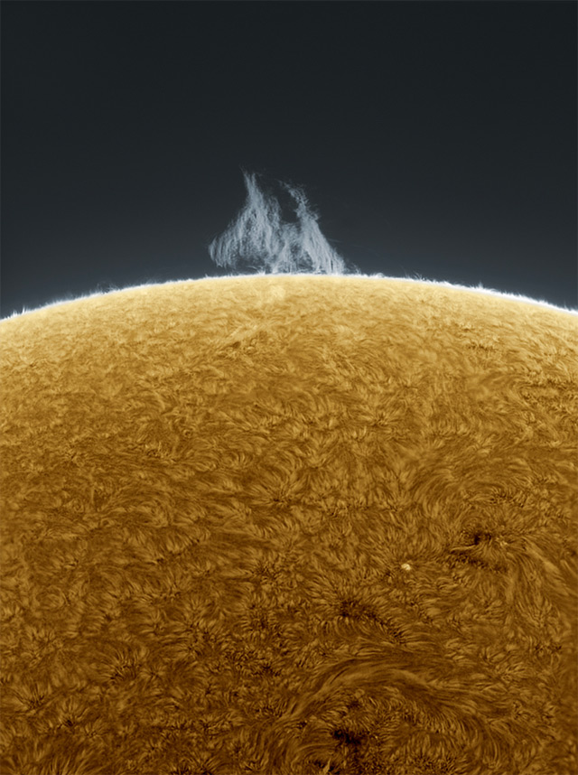 prjkt dump_4_alan friedman_backyard solar photos_1.jpeg