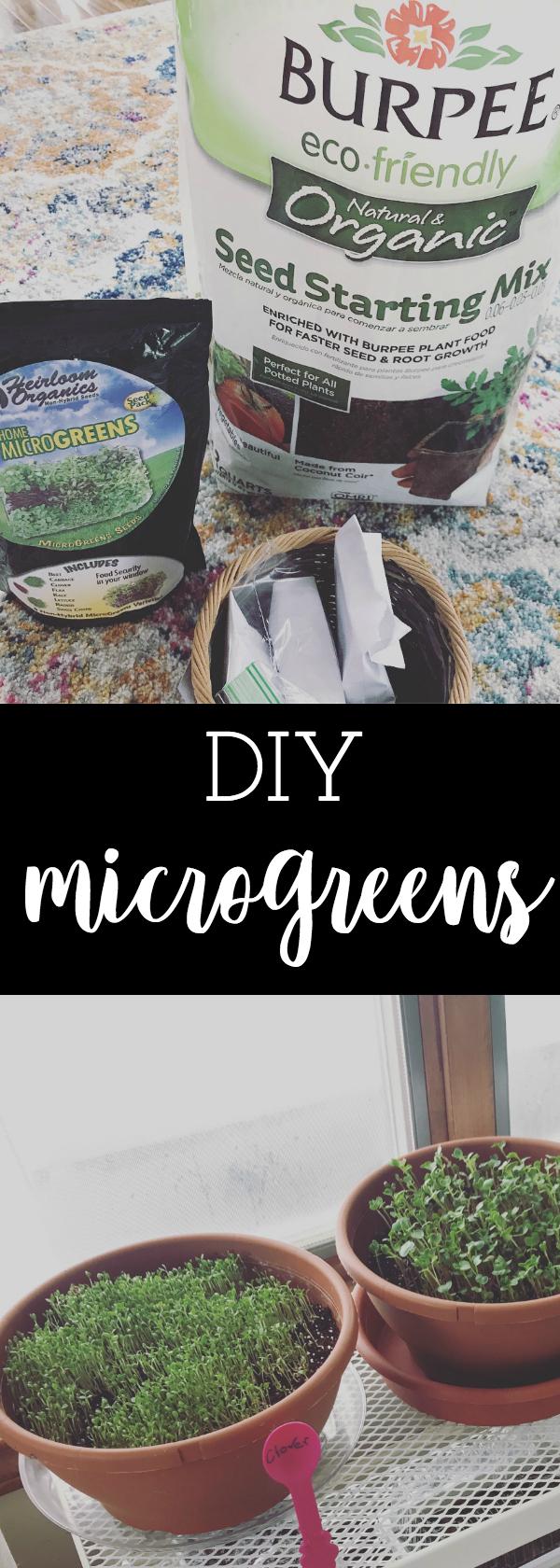 diy microgreens