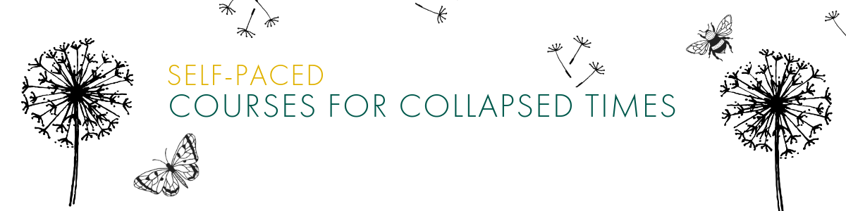 courses for collapsed times