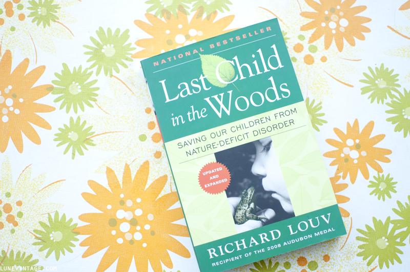 last+child+in+the+woods.png