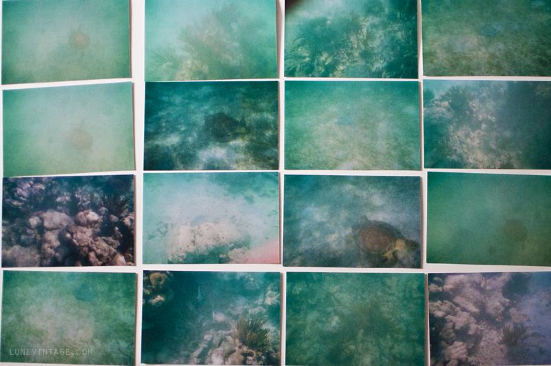 underwater+photos+snorkling+lune+vintage+1.png