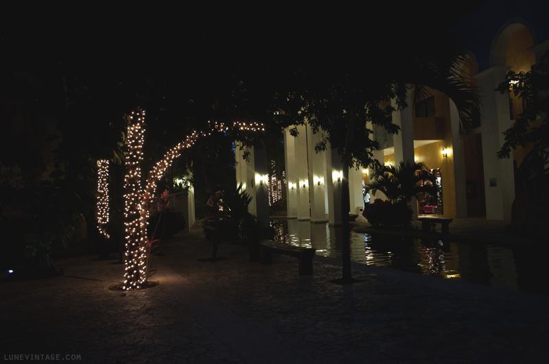 occidental+grand+Xcaret+playa+del+carmen+mexico+lune+travel+blog+-+26.png