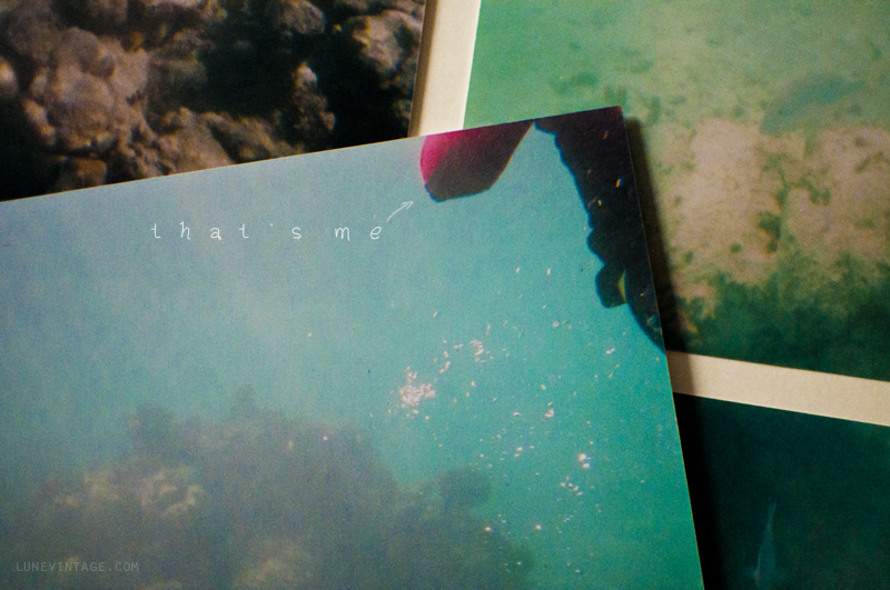 underwater+photos+snorkling+lune+vintage.png