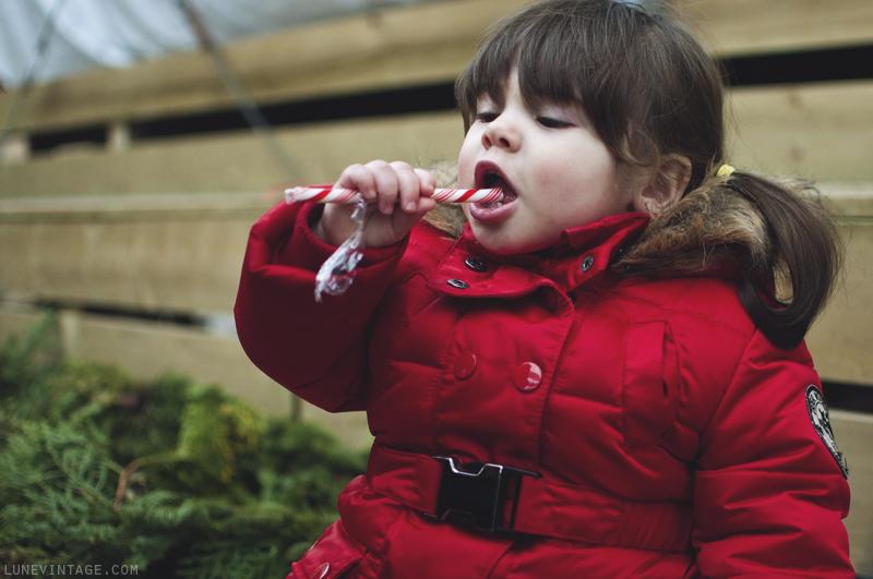 christmas+nursery+7.png