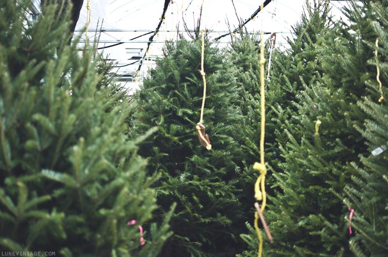 christmas+nursery+6.png