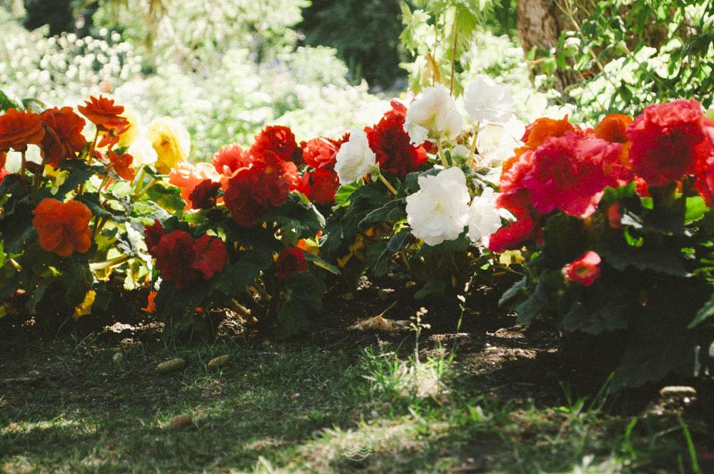 banff Cascade gardens lune vintage blog-5.jpg