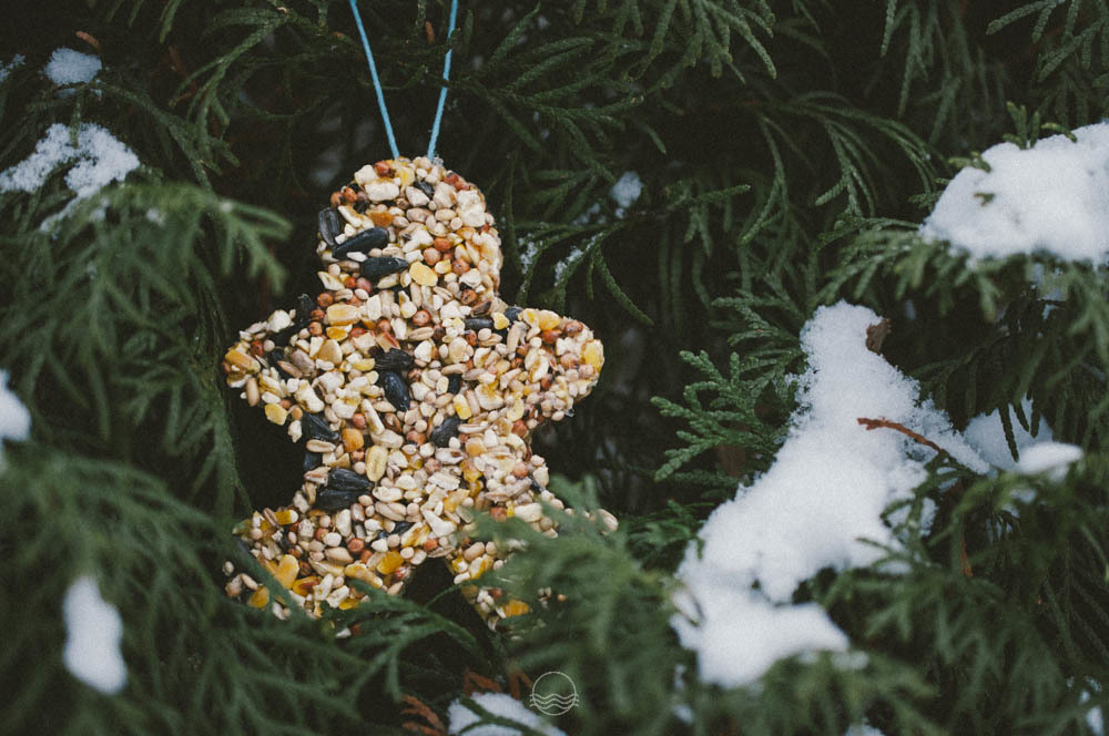 lune blog bird seed feeder ornaments diy-1.jpg